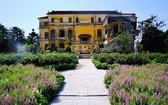 在順化市安定宮搭建的白茶園是《剩女伎倆多5》的主要背景。如今已成為多人前往的旅遊景點。