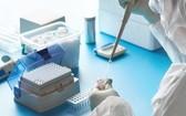 英國政府定於24日啟動一個面向年滿18歲人群的新冠抗體檢測項目。(示意圖源:Getty Images)