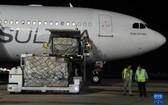 8月28日,工作人員在古巴哈瓦那機場卸載中國政府緊急援助的抗疫物資。(圖源:新華社)