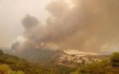 截至當地時間12日晚間,西班牙馬拉加省山區發生的山火仍未被撲滅,山火已經持續五天時間,累計已使7400公頃土地被燒毀。(圖源:互聯網)