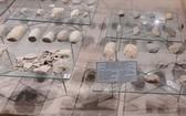 發掘的石制遺物主要是用來鑿、磨的石器工具。