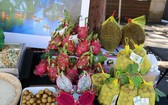 越南蓮子炊飯及新鮮水果在悉尼農產品促銷會上亮相。(圖源:越通社)