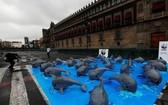 環保組織籲拯救加灣鼠海豚。(圖片來源:互聯網)