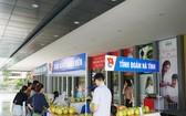 共青團員助農民銷售柚子