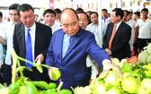 阮春福總理參觀新農村產品。