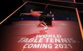 職業乒乓球全新賽事體系將問世。