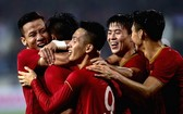 越南國足隊。