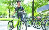 市中心區將提供公共自行車服務。