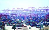 多國港口禁止印度船員換班船舶入港。