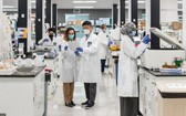 美國Arcturus Therapeutics 科學家們在試驗室研發新冠疫苗。
