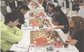 2017年HD銀行盃國際象棋公開賽一瞥。