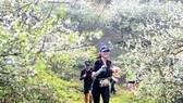 Các VĐV sẽ chạy qua những cung đường đẹp và lãng mạn của Mộc Châu.