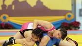 Các tuyển thủ Việt Nam sẽ không dự vòng loại Olympic 2020.