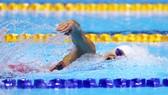 Kình ngư Nguyễn Thị Ánh Viên sẽ thi đấu cự ly 800m tự do nữ.