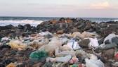 100% các khu du lịch biển không sử dụng nhựa 1 lần