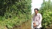 """Hơn 50% hộ dân đã nhận tiền bồi thường tại """"điểm nóng"""" đất rừng U Minh hạ"""