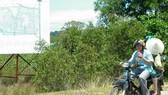 Phú Quốc tạm dừng chuyển đổi mục đích sử dụng đất trường hợp phân lô, tách thửa