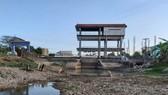 Kênh mương bên trong vùng ngọt hóa huyện Trần Văn Thời bị khô cạn do hạn hán