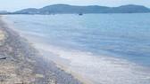 Xây dựng hệ thống quan trắc và cảnh báo môi trường biển 4 tỉnh miền Trung