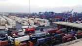 Hàng hóa thông quan tại cảng Cát Lái hàng ngày rất nhiều