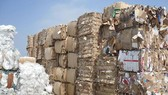 Buộc tái xuất các lô hàng lợi dụng nhập khẩu phế liệu để đưa chất thải vào Việt Nam