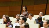 ĐBQH đề nghị Bộ trưởng trả lời có hay không ủng hộ thủy điện nhỏ  