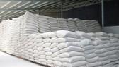 Xuất cấp không thu tiền hơn 4.300 tấn gạo cho 3 tỉnh bị thiên tai, mưa lũ  