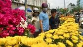 Khách lựa mua hoa kiểng chiều 10-2 tại quận Gò Vấp