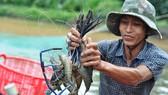 Đồng Nai đầu tư hơn 226 tỷ đồng cho vùng nuôi thủy sản công nghệ cao