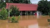 Lũ tiếp tục dâng, Đồng Nai di dời 1.200 hộ ven sông