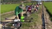 Đồng Nai: Đưa máy bay không người lái vào sản xuất lúa chất lượng cao
