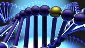 Đầu tư 4,5 triệu USD nghiên cứu giải mã bộ gen người Việt