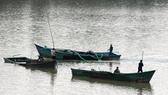 Boats to exploit sand in Song Can Stream in Khanh Hoa Province (PHoto: SGGP)