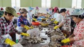 Project helps SMEs in Tra Vinh improve environmental knowledge