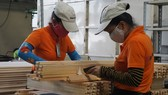 Vietnam earns $3.52 billion from wood exports