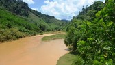 The Greater Mekong Subregion biodiversity conservation corridors and project management plans will be put into operation from 2019, said Vice Director of the Vietnam National Administration of Environment Nguyen The Dong (Photo: Baotainguyenmoitruong.vn)