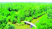 Enjoying fresh air in Lung Ngoc Hoang Nature Reserve