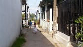 illegally-built houses in small alleys in Ca Mau Province (Photo: SGGP)