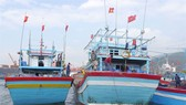 Vietnam had 13,150 ships with cruise monitoring equipment by January this year. — Photo nld.com.vn