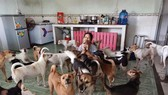 Nguyen Thi Thanh Ha with her dogs. — Photo tienphong.vn