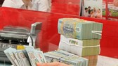 The State Bank of Vietnam set the daily reference exchange rate at VND23,141  per USD on January 18. (Photo: VNA)