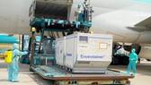 Largest batch of Covid-19 vaccine AstraZeneca arrives in HCMC