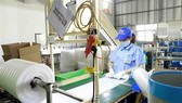 Vietnam ranks high on economic performance in region: website