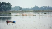 Floodwater level will continue raising in Mekong Delta River in the next few days