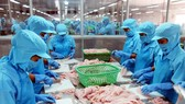 Vietnam's total seafood export value in January dropped by 12.5 per cent to US$644 million year-on-year. Photo baodansinh.vn