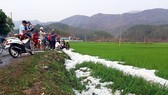 Hail covers paddy crops.(Photo: Central Steering Committee for Natural Disaster Prevention and Control)