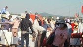 Quang Ngai increases ships picking up over 2,000 tourists from Ly Son Island