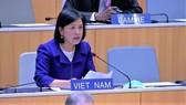 Ambassador Le Thi Tuyet Mai (Photo: VNA)