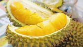 Durian, pomelo, passion fruit in row will be exported to China