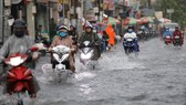 Thu Duc City needs anti-flooding projects